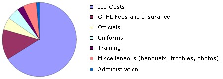 Expenses Chart North York Knights